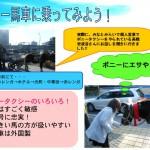「横浜にポニー馬車が居るらしい!」 4班は冬のさなか、3度通ってやっとクリスマスイヴに馬車に会えて涙。